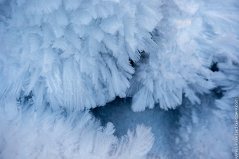 Snow feathers
