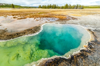 The Yellowstone's Caldeira is full of geological life when the colorful hotsprings show themselves on the surface.