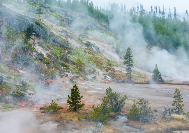 The acid breaks up the soil In Yellowstone National Park, creating mud, and nourishes microorganisms that create amazing colors in the landscape !