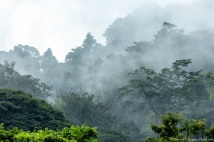 Chiapas, the land of mists